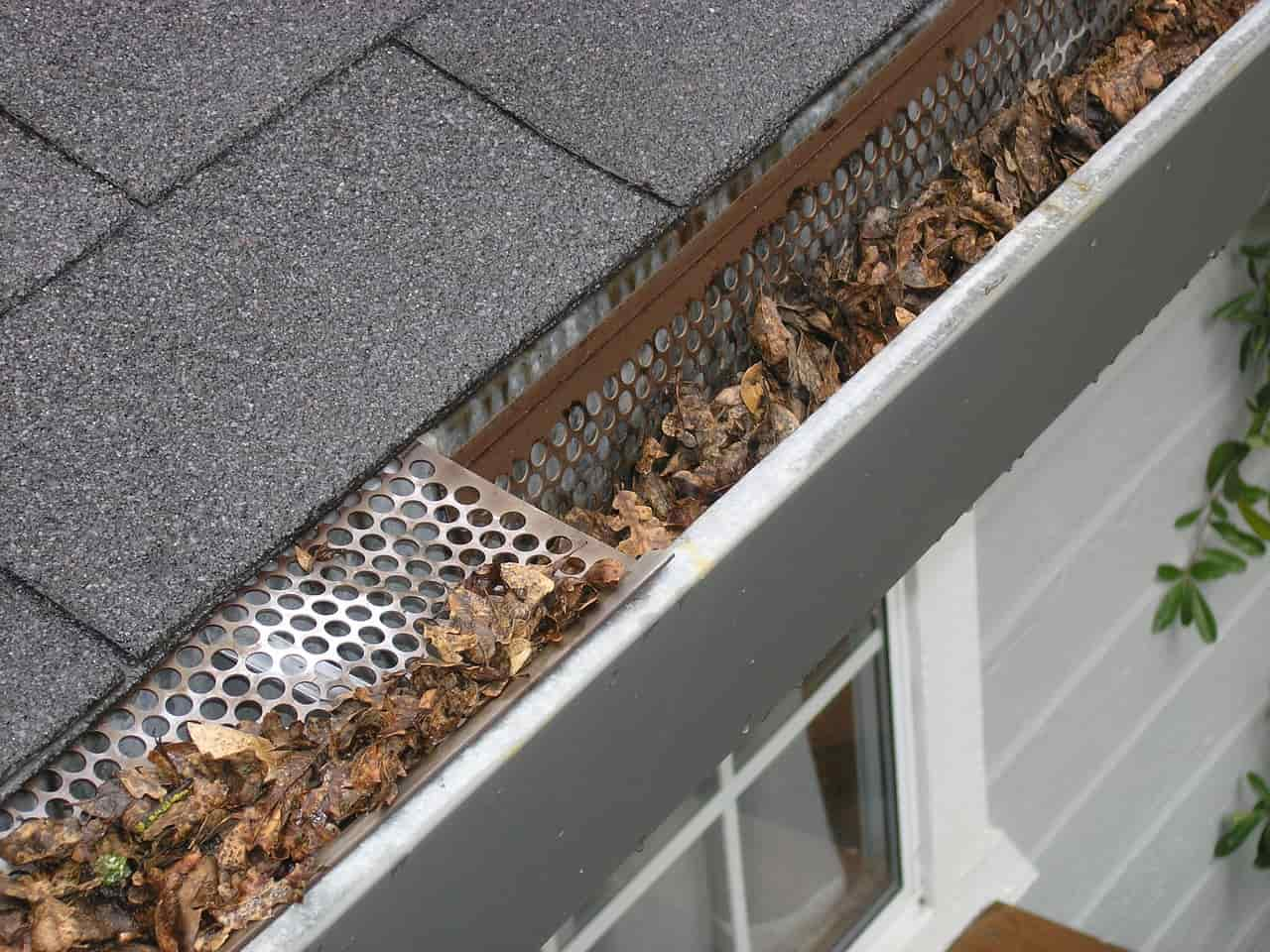 Gutters Cleaning Services in Cardiff