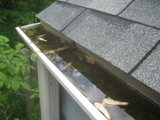 How often should gutters be cleaned